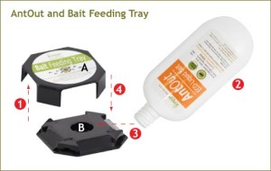 AntOut and Bait Feeding Tray